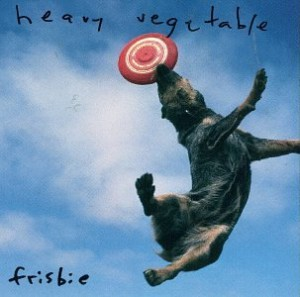 Heavy Vegetable frisbie
